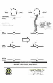 What is a functional design blueprint front view side view skeletal view malvernweather Choice Image